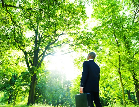 Businessman looking up at green trees